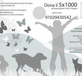 UNA-5x1000-def-01-1024x723